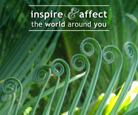 Inspire and affect the world around you